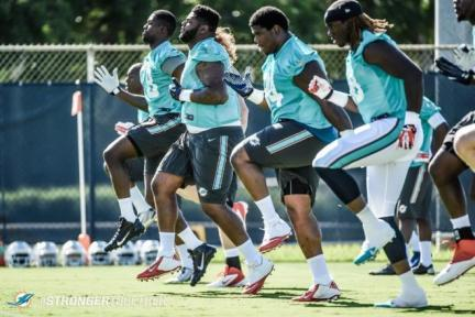 Dolphins 2015 Draftees