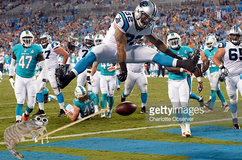 The Carolina Panthers' Brandon Wegher (32) scores a touchdown past the Miami Dolphins defense in the third quarter of preseason action at Bank of America Stadium in Charlotte, N.C., on Saturday, Aug. 22, 2015. The Panthers won, 31-30. (David T. Foster III/Charlotte Observer/TNS)