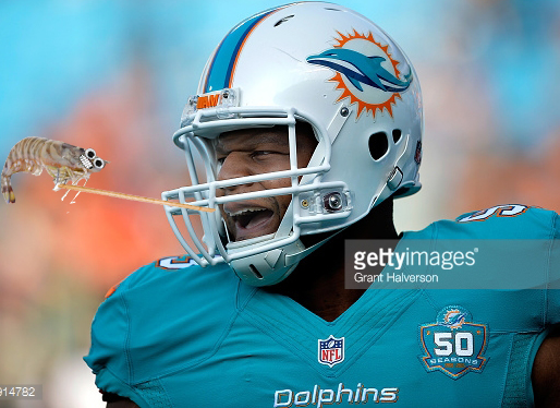 CHARLOTTE, NC - AUGUST 22: Ndamukong Suh #93 of the Miami Dolphins warms up during their preseason NFL game against the Carolina Panthers at Bank of America Stadium on August 22, 2015 in Charlotte, North Carolina. (Photo by Grant Halverson/Getty Images)