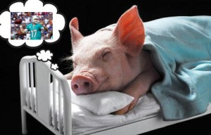 PiggyDreamsTanny