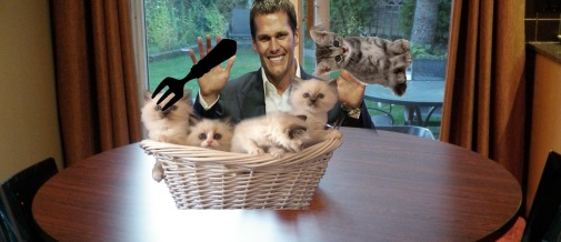 KittensAreDelicious