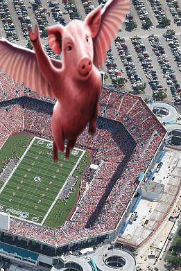 PiggyStadium