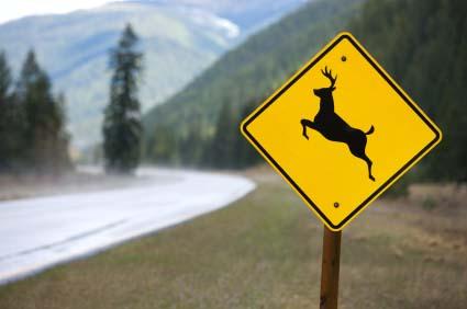 Deer crossing sign in Idaho.