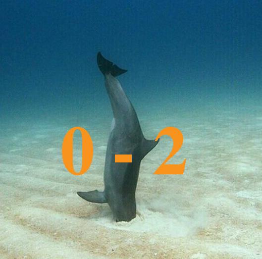 dolphinsfail