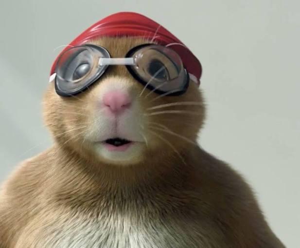 hamstercap